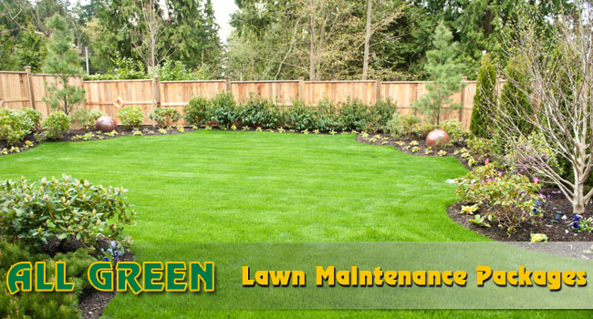 1 ... - All Green Lawn And Tree Berks County Lawn And Tree Service